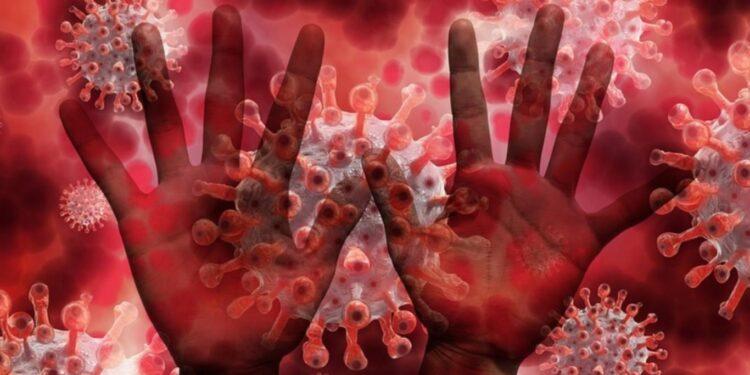 coronavirus-13-octombrie